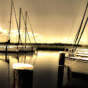 Dog River Marina Poster by Gulf Island Photography and Images