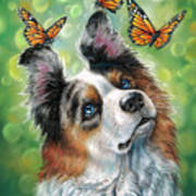 Dog With Butterflies Poster