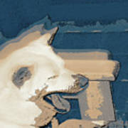 Doge Sneeze 3 Poster