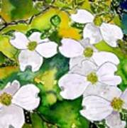 Dogwood Tree Flowers Poster