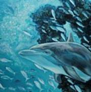 Dolphin With Small Fish Poster