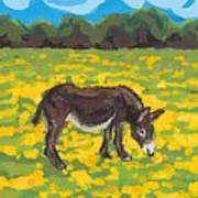 Donkey And Buttercup Field Poster