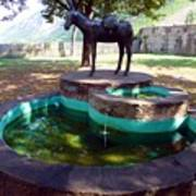 Donkey Fountain Poster