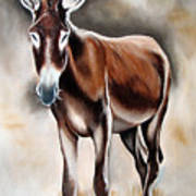 Donkey Poster