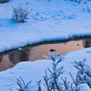Donnelly Creek In Winter Poster
