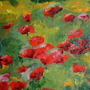 Door County Poppies Poster
