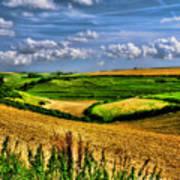 Dorset Farmland Poster
