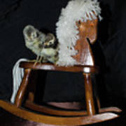 Double Seat Rocking Horse Poster