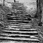 Dovedale Steps Poster