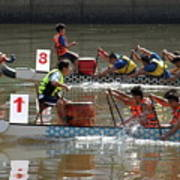 Dragon Boat Races On The Love River In Taiwan Poster