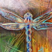 Dragon Fly 1 Poster
