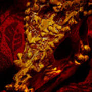 Dragon Skull Poster