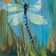 Dragonfly Fantasy Poster