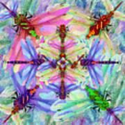 Dragonfly Mandala Poster