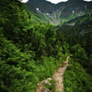 Dramatic Mountain Landscape With Distinctive Green Poster