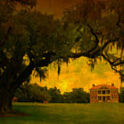 Drayton Hall Plantation In Charleston Poster