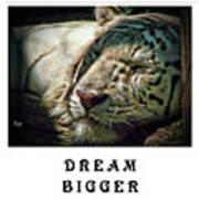 Dream Bigger Poster