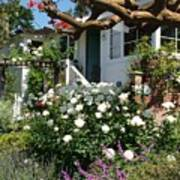 Dream Cottage In Laguna Poster