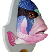 Dreamfish Trophy Poster