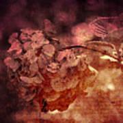 Dreaming Hortensia Poster