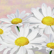 Dreaming Of Daisies Poster