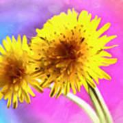 Dreaming Of Dandelions Poster