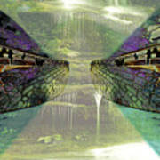 Dreamtime Gondwanaland Poster