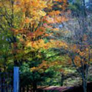 Dreamy Fall Scene Poster