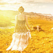 Dreamy Summer Fields Poster