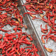 Dried Chili Peppers Poster