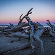 Driftwood Beach 1 Poster