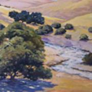 Dry Creek Poster