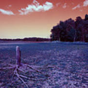 Dry Lake Infrared Poster