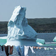 Drying Clothes In Ice Berg Alley Poster