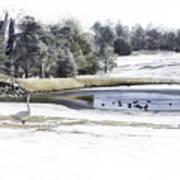 Broadmoor Winter Swim Poster