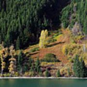 Duffey Lake Colors Poster