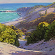 Dunes At Soldiers Beach Poster