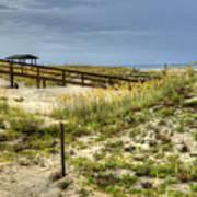 Dunes At Tybee Island Poster