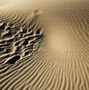 Dunes Footprints Poster