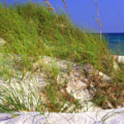 Dunes Trail The Emerald Coast Poster