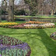 Dutch Tulip Gardens Poster