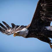 Eagle 3 Poster