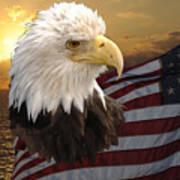 Eagle Flag I Poster
