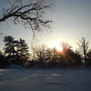 Early January Winter Sunrise Poster