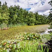 East Cramlington Nature Reserve Poster