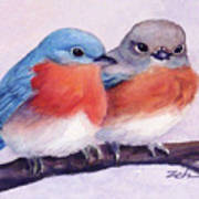 Eastern Bluebirds Poster