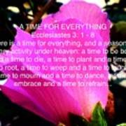 Ecclesiastes 3 A Time For Everything Poster