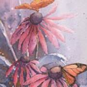 Echinacea And Butterflies Poster