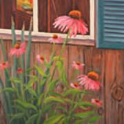 Echinacea Flower Poster