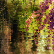 Echoes Of Monet - Cherry Blossoms Over A Pond - Brooklyn Botanic Garden Poster